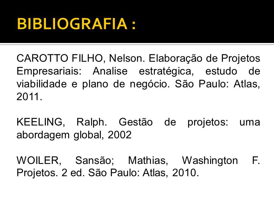 CAROTTO FILHO, Nelson.