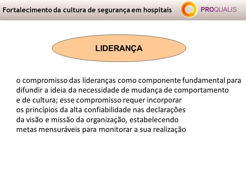 Fortalecimento da cultura de segurança em hospitais o compromisso das lideranças como componente fundamental para difundir a ideia da necessidade de m
