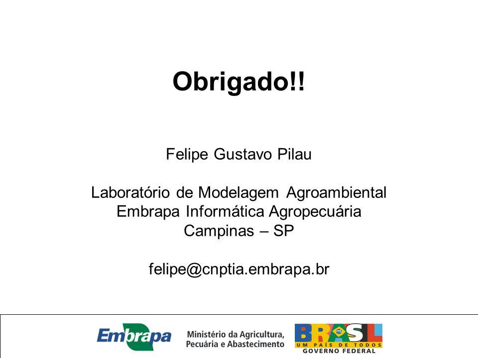 Obrigado!! Felipe Gustavo Pilau Laboratório de Modelagem Agroambiental Embrapa Informática Agropecuária Campinas – SP felipe@cnptia.embrapa.br