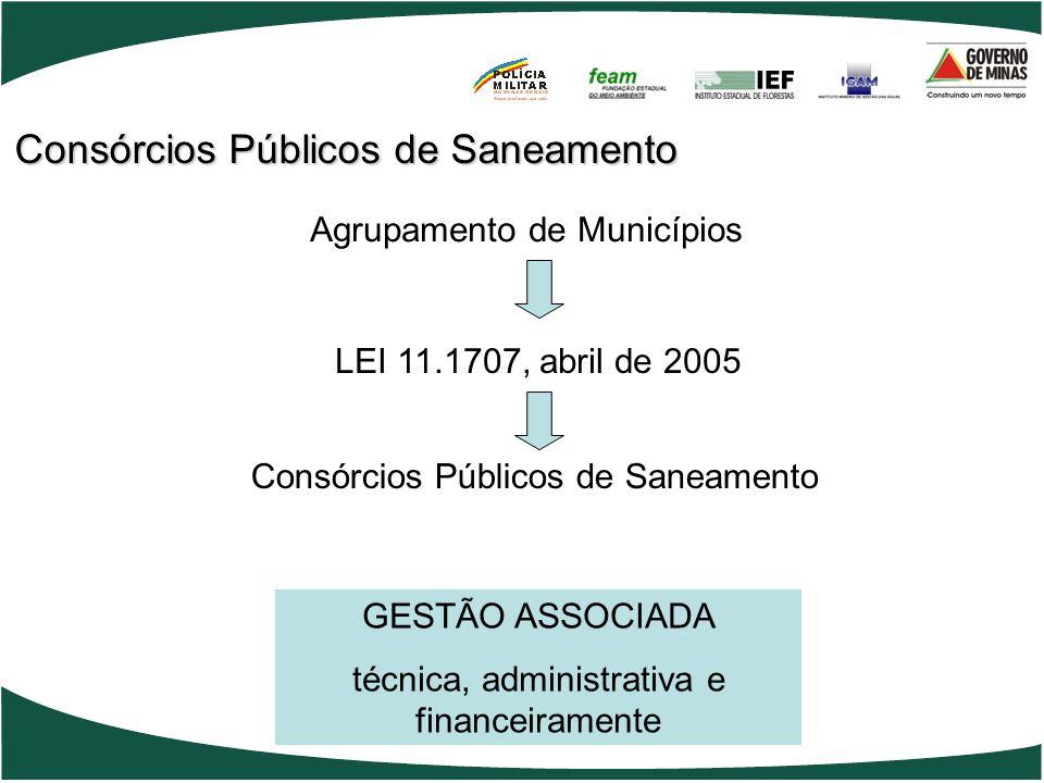 Agrupamento de Municípios LEI 11.1707, abril de 2005 Consórcios Públicos de Saneamento GESTÃO ASSOCIADA técnica, administrativa e financeiramente Consórcios Públicos de Saneamento