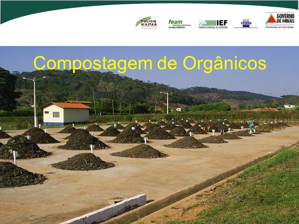 Compostagem de Orgânicos