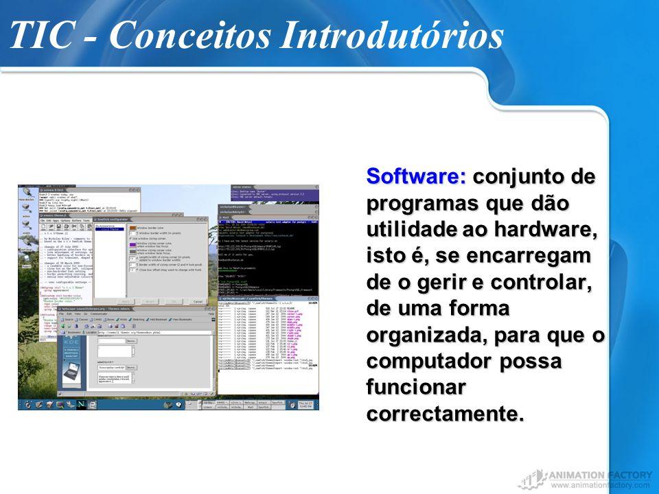 TIC - Conceitos Introdutórios Software: conjunto de programas que dão utilidade ao hardware, isto é, se encarregam de o gerir e controlar, de uma form