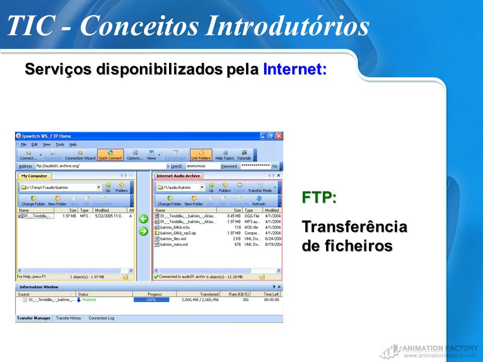 TIC - Conceitos Introdutórios Serviços disponibilizados pela Internet: Fóruns Temáticos de Discussão