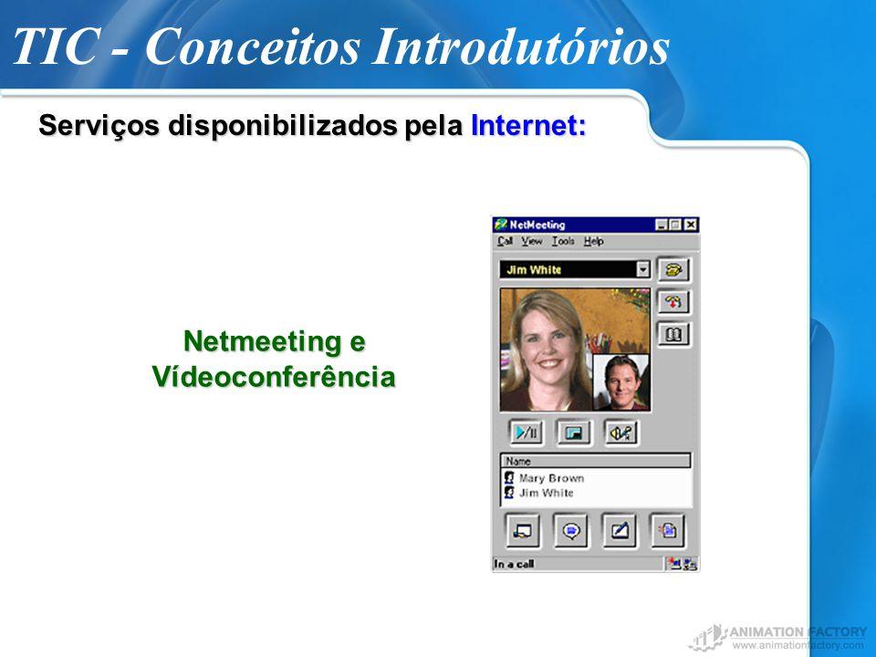 TIC - Conceitos Introdutórios Serviços disponibilizados pela Internet: Netmeeting e Vídeoconferência