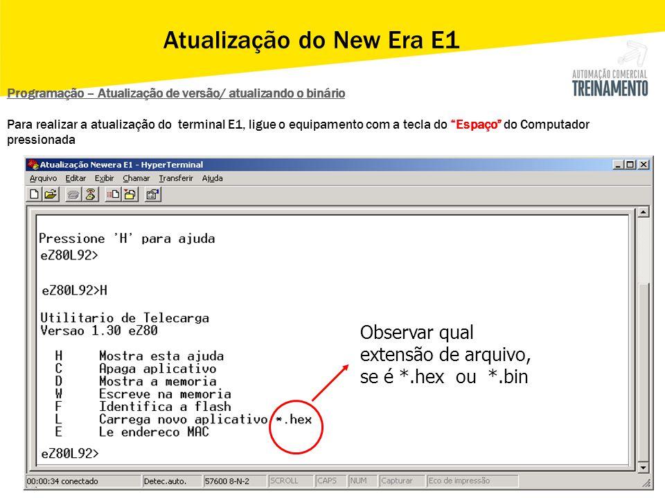 Observar qual extensão de arquivo, se é *.hex ou *.bin Programação – Atualização de versão/ atualizando o binário Para realizar a atualização do termi