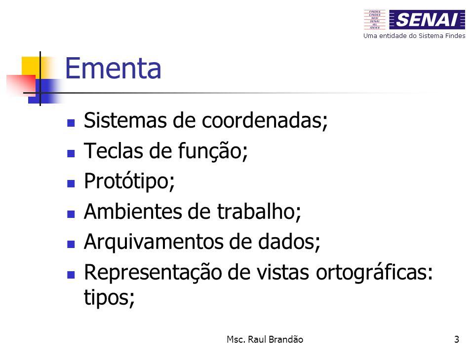 Msc. Raul Brandão3 Ementa Sistemas de coordenadas; Teclas de função; Protótipo; Ambientes de trabalho; Arquivamentos de dados; Representação de vistas