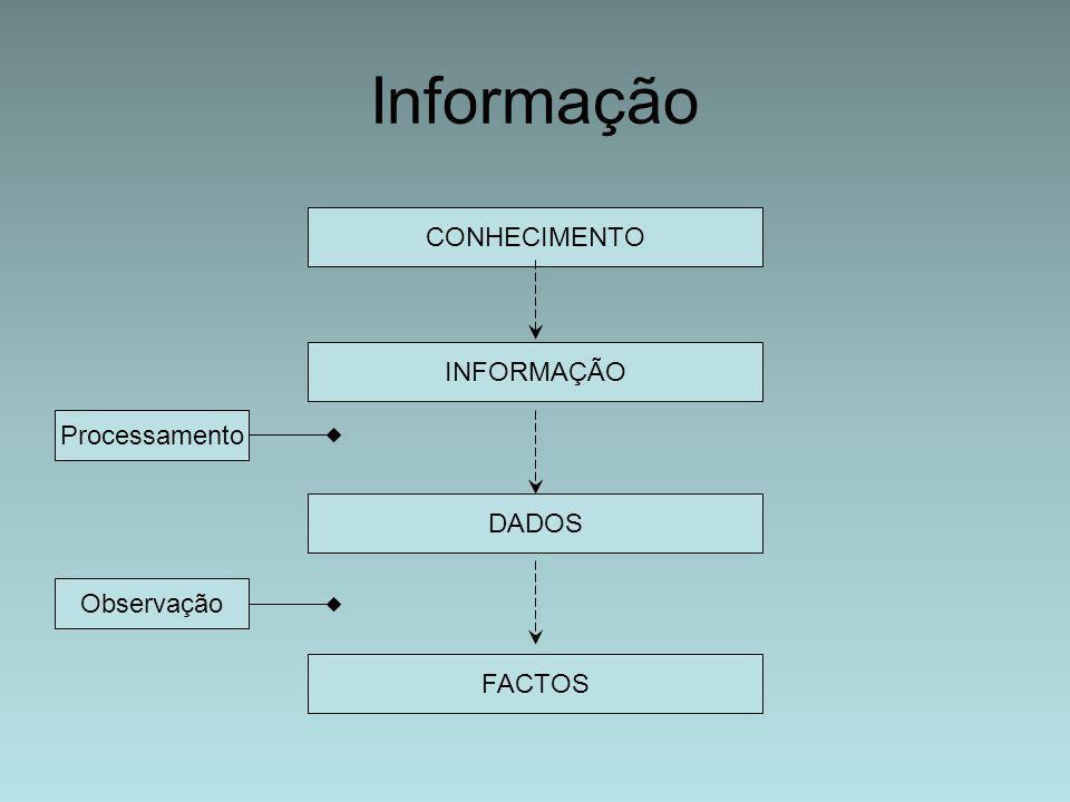 Informação CONHECIMENTO INFORMAÇÃO DADOS FACTOS Processamento Observação