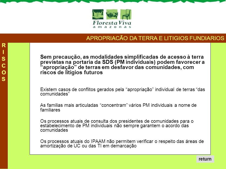 """Sem precaução, as modalidades simplificadas de acesso à terra previstas na portaria da SDS (PM individuais) podem favorecer a """"apropriação"""" de terras"""