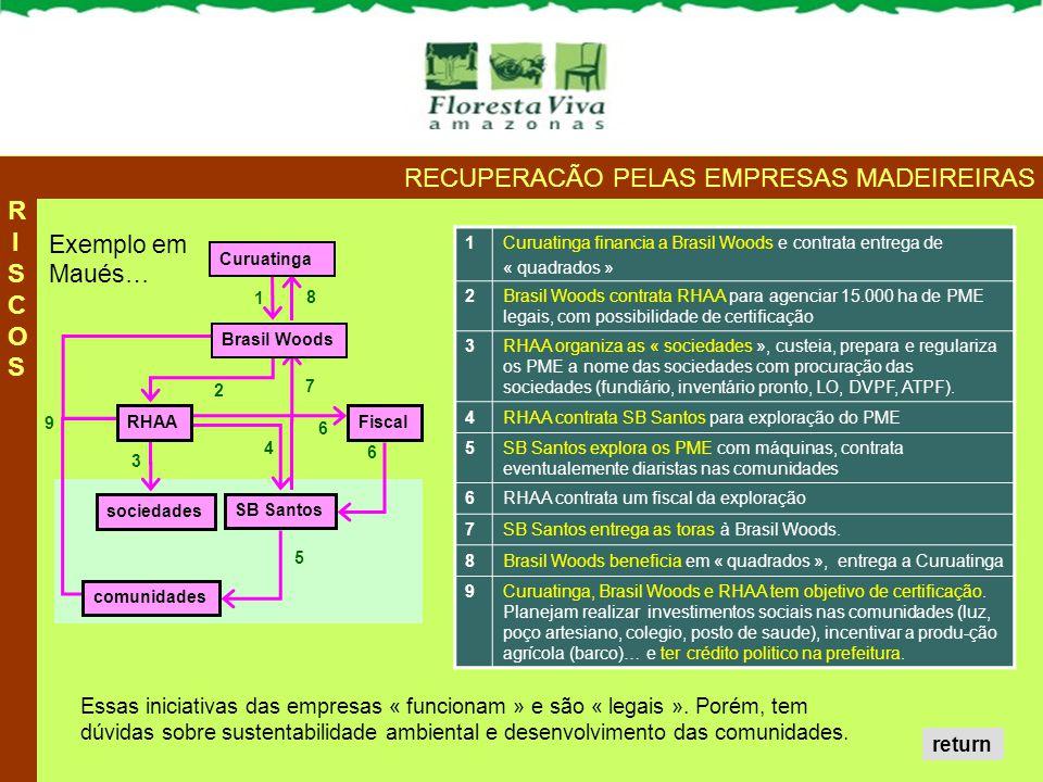 1Curuatinga financia a Brasil Woods e contrata entrega de « quadrados » 2Brasil Woods contrata RHAA para agenciar 15.000 ha de PME legais, com possibi