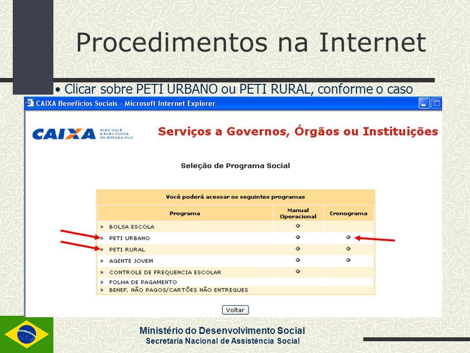 Ministério do Desenvolvimento Social Secretaria Nacional de Assistência Social Procedimentos na Internet Clicar sobre PETI URBANO ou PETI RURAL, confo