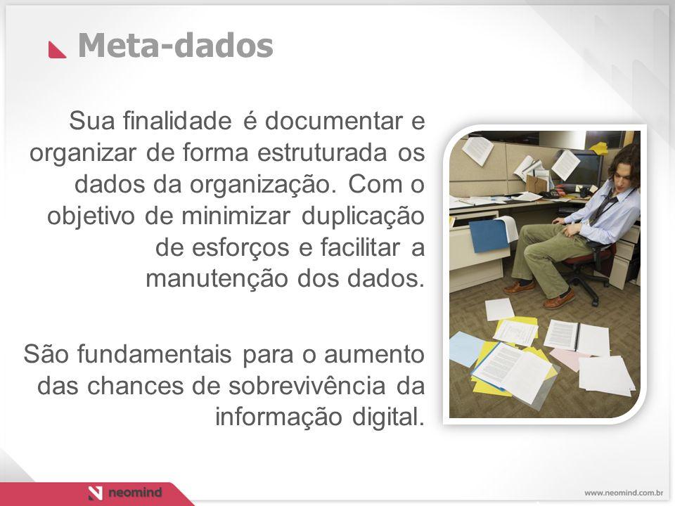 Meta-dados Sua finalidade é documentar e organizar de forma estruturada os dados da organização.