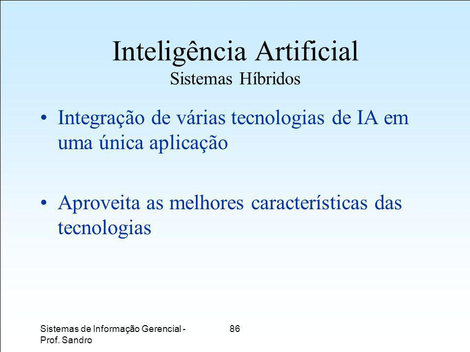 Sistemas de Informação Gerencial - Prof.