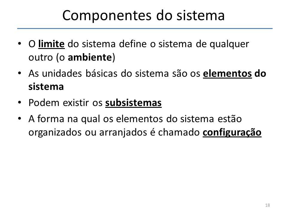 18 Componentes do sistema O limite do sistema define o sistema de qualquer outro (o ambiente) As unidades básicas do sistema são os elementos do siste