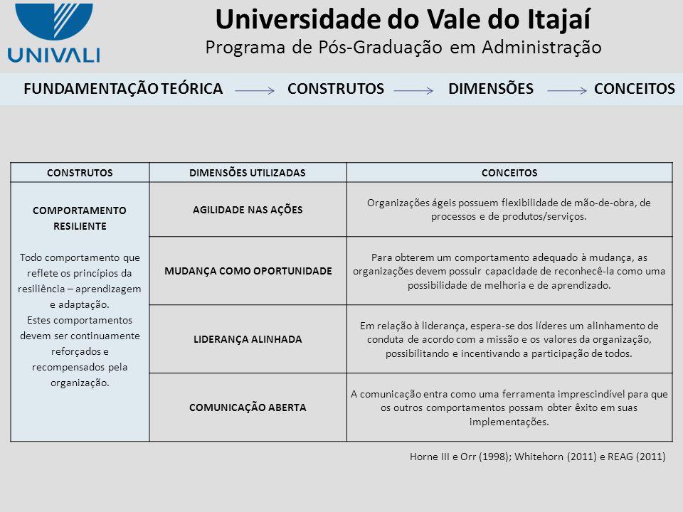 Universidade do Vale do Itajaí Programa de Pós-Graduação em Administração FUNDAMENTAÇÃO TEÓRICACONSTRUTOSDIMENSÕES CONSTRUTOSDIMENSÕES UTILIZADASCONCE