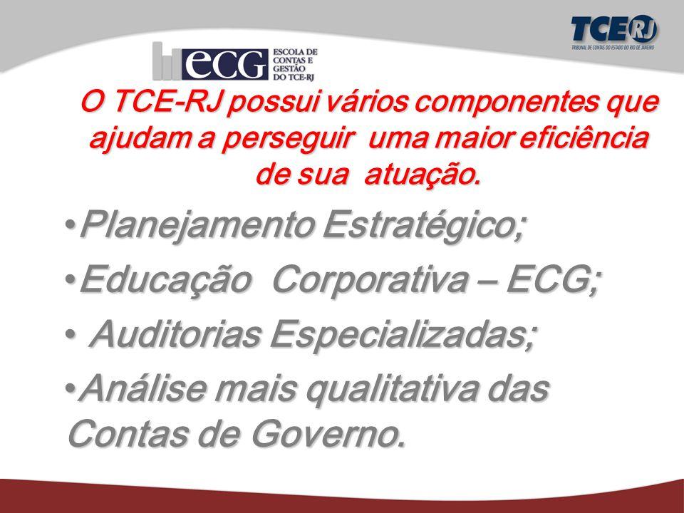 O TCE-RJ possui vários componentes que ajudam a perseguir uma maior eficiência de sua atuação.