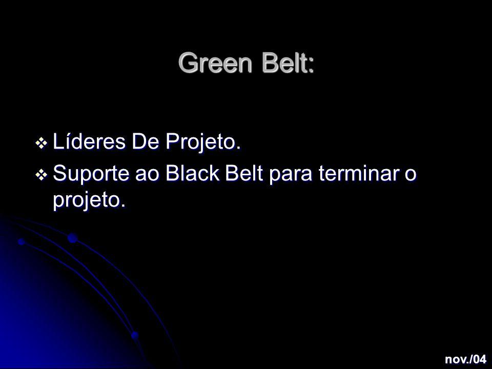 Green Belt:  Líderes De Projeto.  Suporte ao Black Belt para terminar o projeto. nov./04
