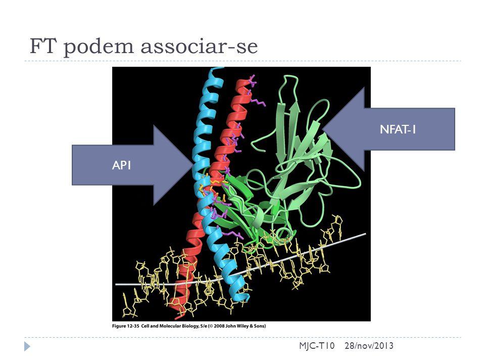 FT podem associar-se MJC-T10 AP1 NFAT-1 28/nov/2013