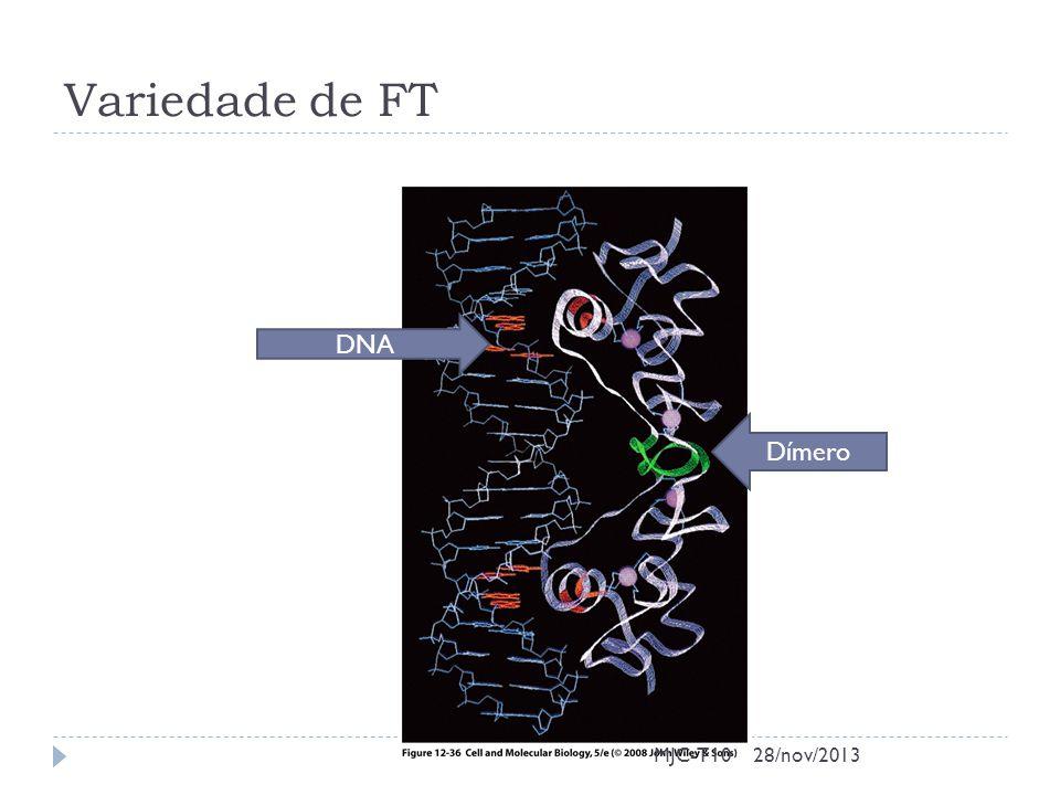 Variedade de FT MJC-T10 DNA Dímero 28/nov/2013