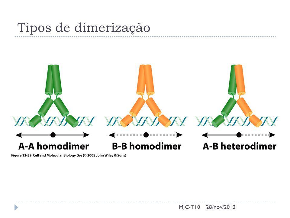 Tipos de dimerização MJC-T1028/nov/2013