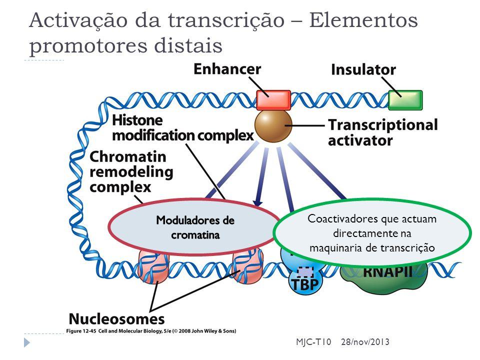 Activação da transcrição – Elementos promotores distais MJC-T10 Coactivadores que actuam directamente na maquinaria de transcrição 28/nov/2013