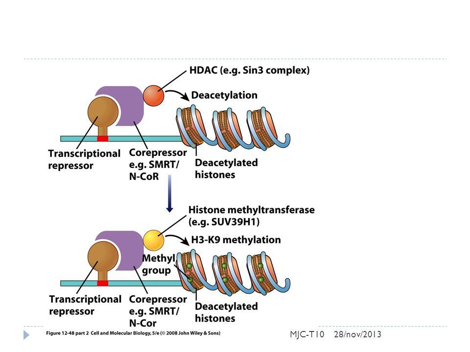 MJC-T1028/nov/2013