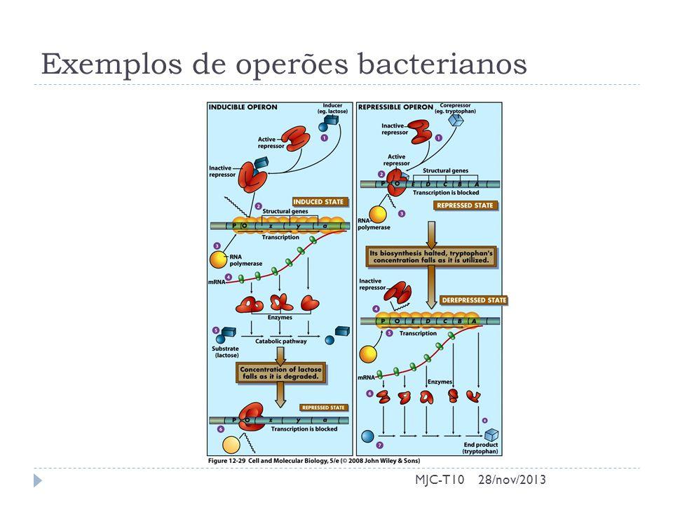 Operões indutíveis – O operão lac MJC-T1028/nov/2013