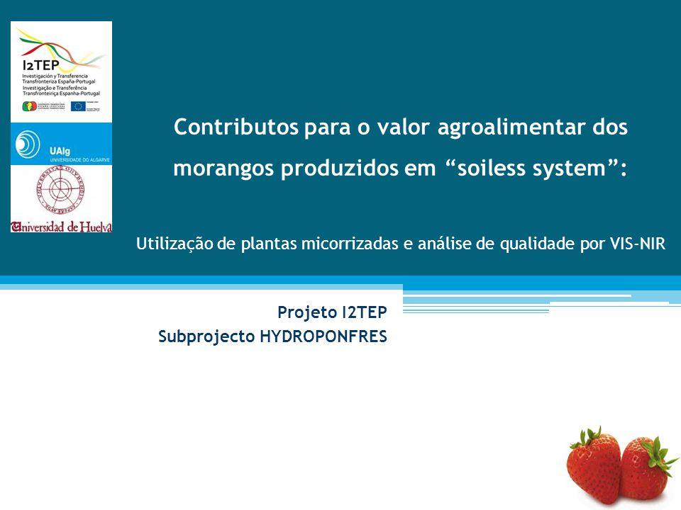 """Projeto I2TEP Subprojecto HYDROPONFRES Contributos para o valor agroalimentar dos morangos produzidos em """"soiless system"""": Utilização de plantas micor"""
