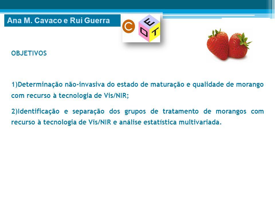 OBJETIVOS 1)Determinação não-invasiva do estado de maturação e qualidade de morango com recurso à tecnologia de Vis/NIR; 2)Identificação e separação d