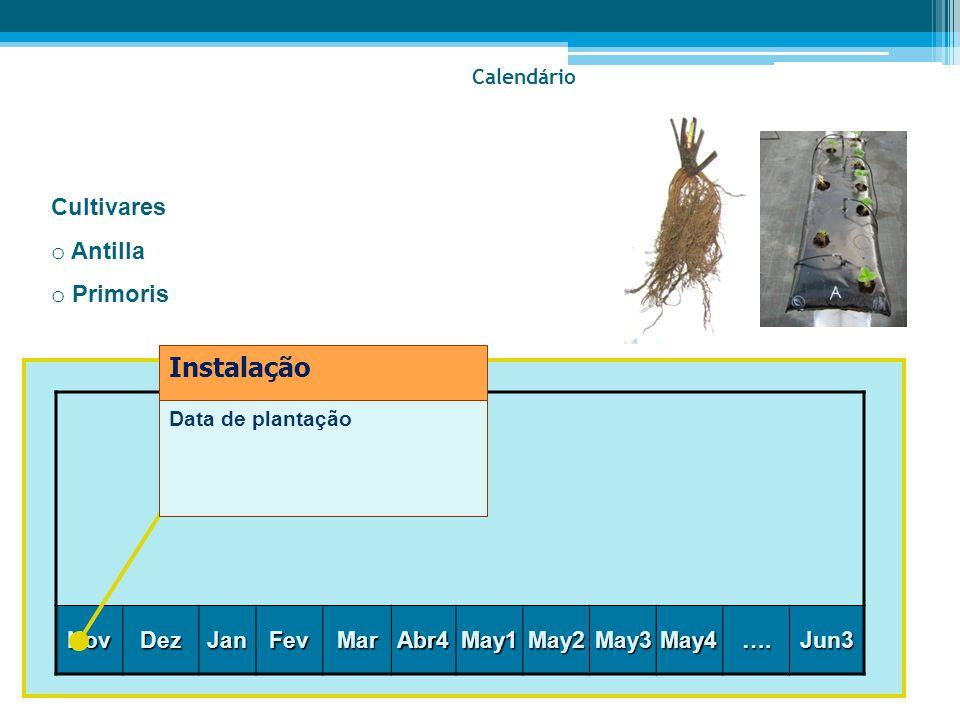 Nov Dez JanFevMarAbr4May1May2May3May4….Jun3 Data de plantação Instalação Calendário Cultivares o Antilla o Primoris