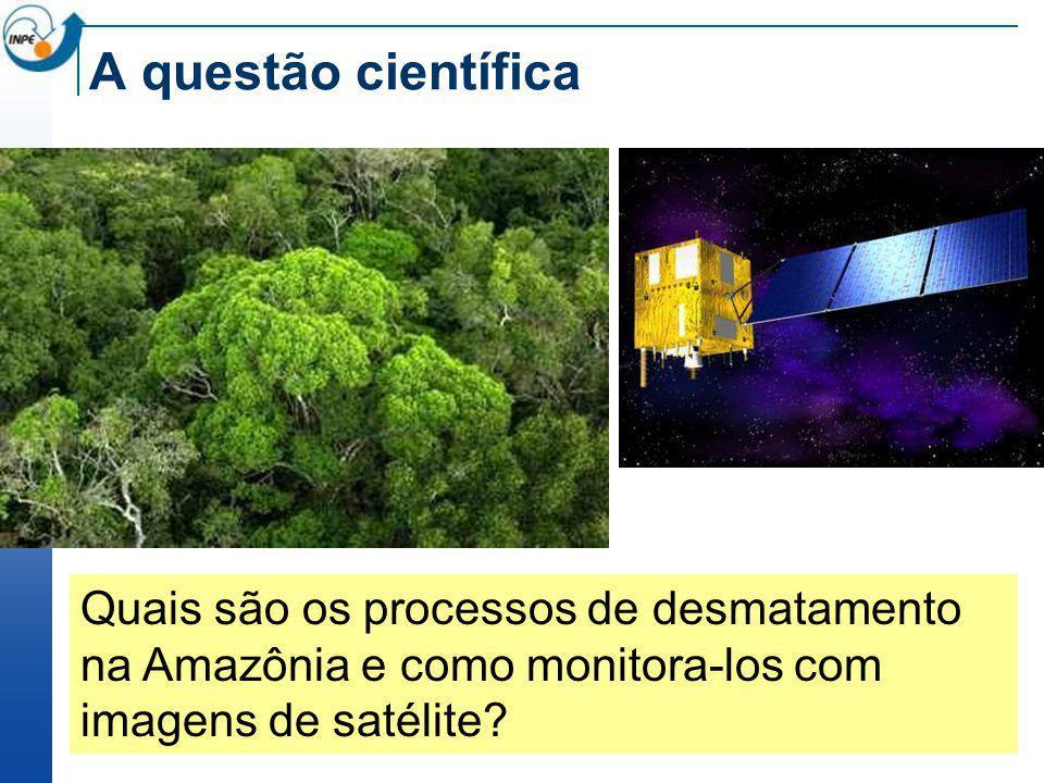 Floresta tempo DETER (alerta de desmatamento) PRODES ( final)