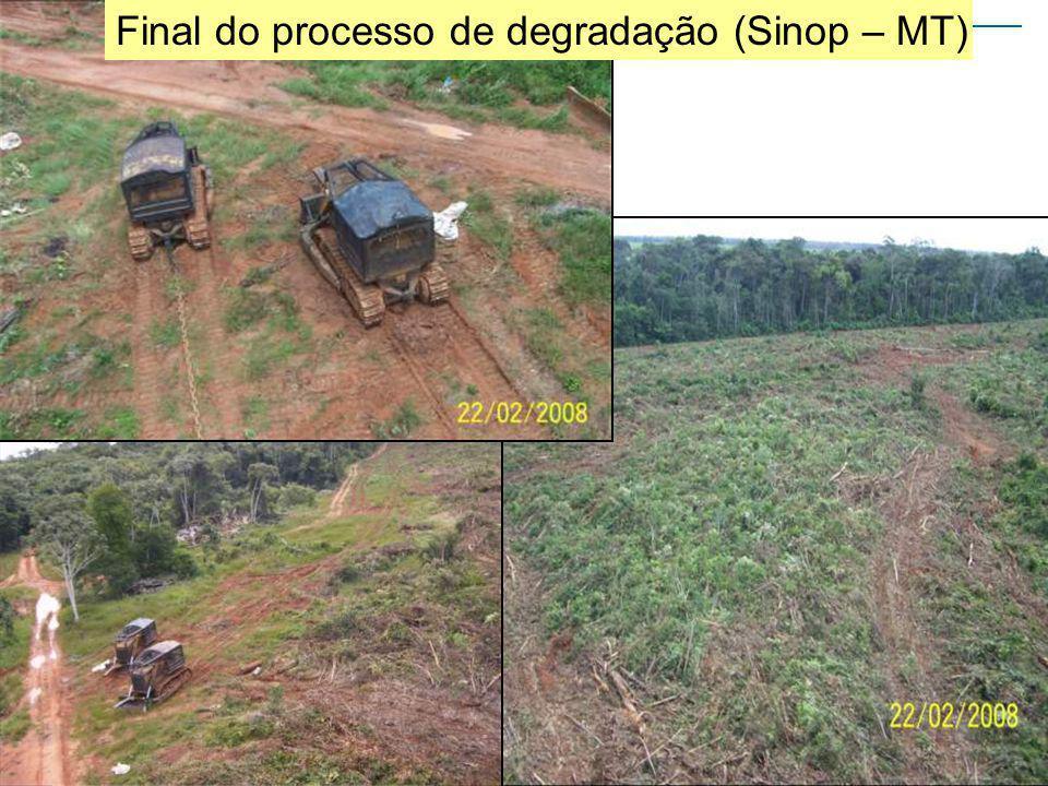 Final do processo de degradação (Sinop – MT)