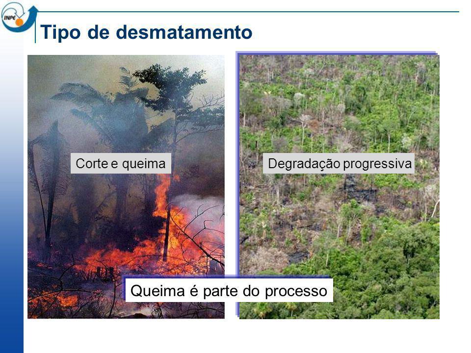 Tipo de desmatamento Corte e queimaDegradação progressiva Queima é parte do processo