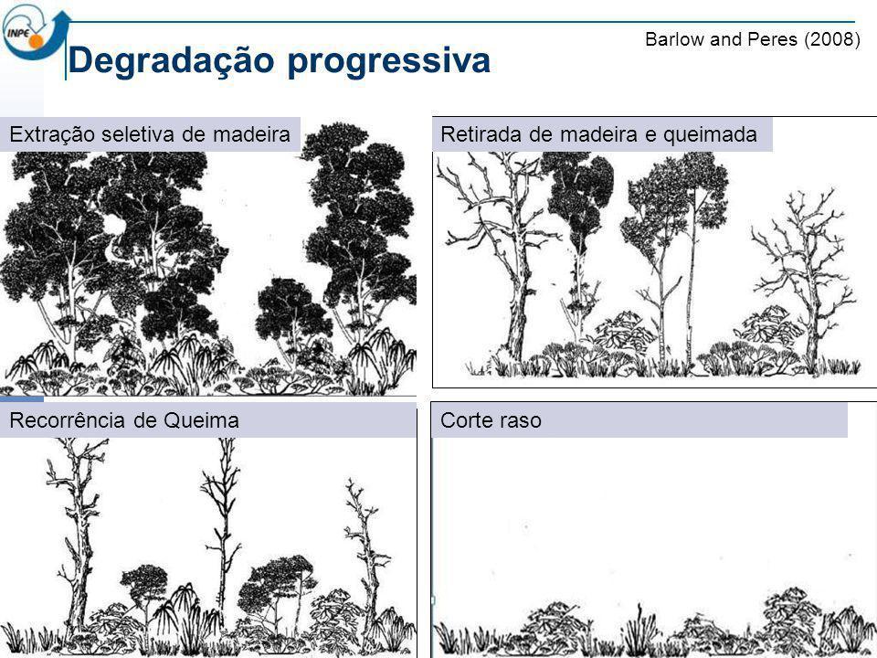 T2 – Perda do sub-bosque Degradação progressiva T1 – Retirada de madeira T3 – Perda parcial do dosselT4 – Perda total do dossel