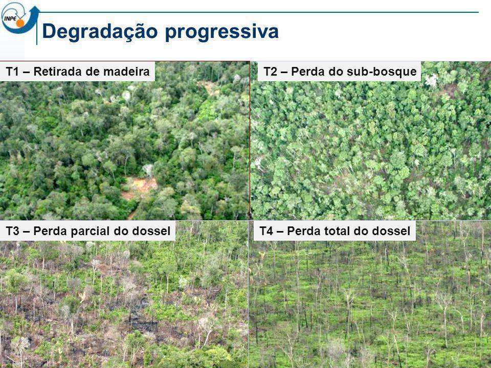 1990 2000 2002 20042006 Landsat Agosto 2007 T0 FlorestaT1 Indício de degradação T2 Cicatriz de Fogo Florestal T3 Indício de Degradação T4 Focos de calor (2006) + Alerta DETER T5 Indício de degradação + Alerta DETER Nov 2007 Histórico do desmatamento em uma área (Itaúba – MT)