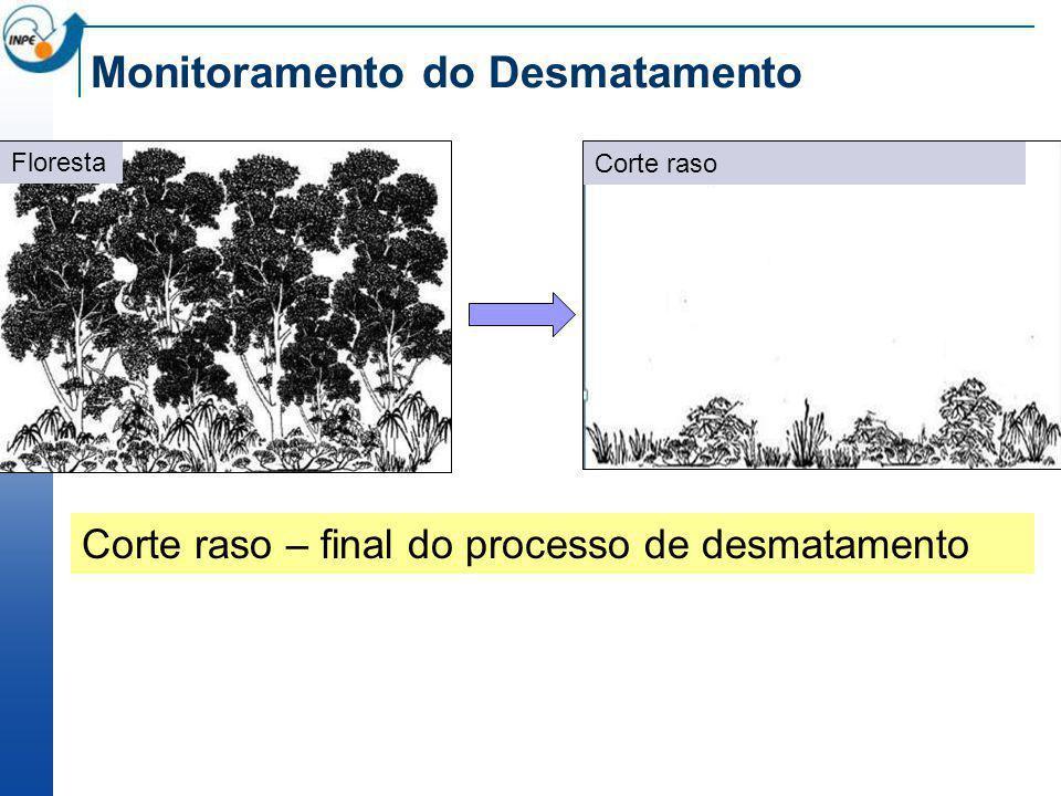 PRODES Taxas anuais de desmatamento por corte raso, km 2 /ano www.obt.inpe.br/prodes 20 anos sem descontinuidade
