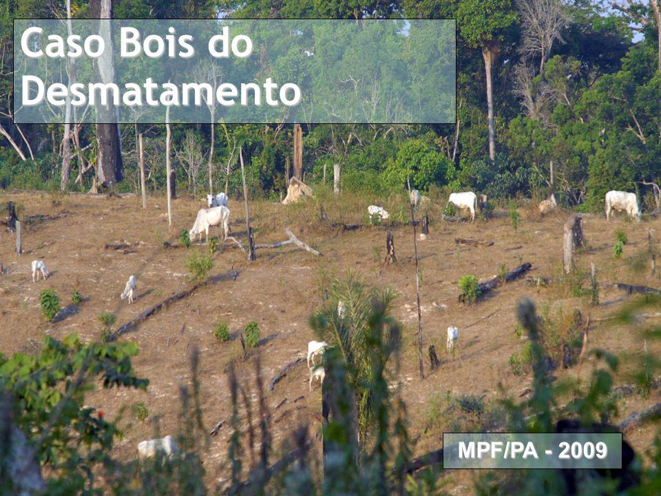 Caso Pecuária na Amazônia Proposta de Termo de Ajuste de Conduta Caso Bois do Desmatamento MPF/PA - 2009