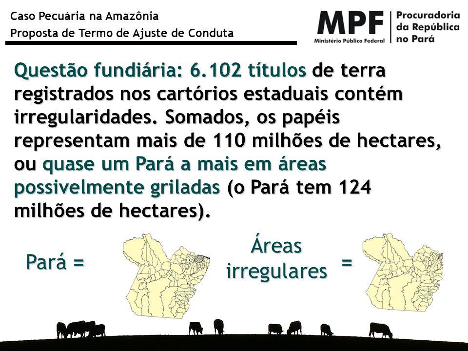 Caso Pecuária na Amazônia Proposta de Termo de Ajuste de Conduta Questão fundiária: 6.102 títulos de terra registrados nos cartórios estaduais contém