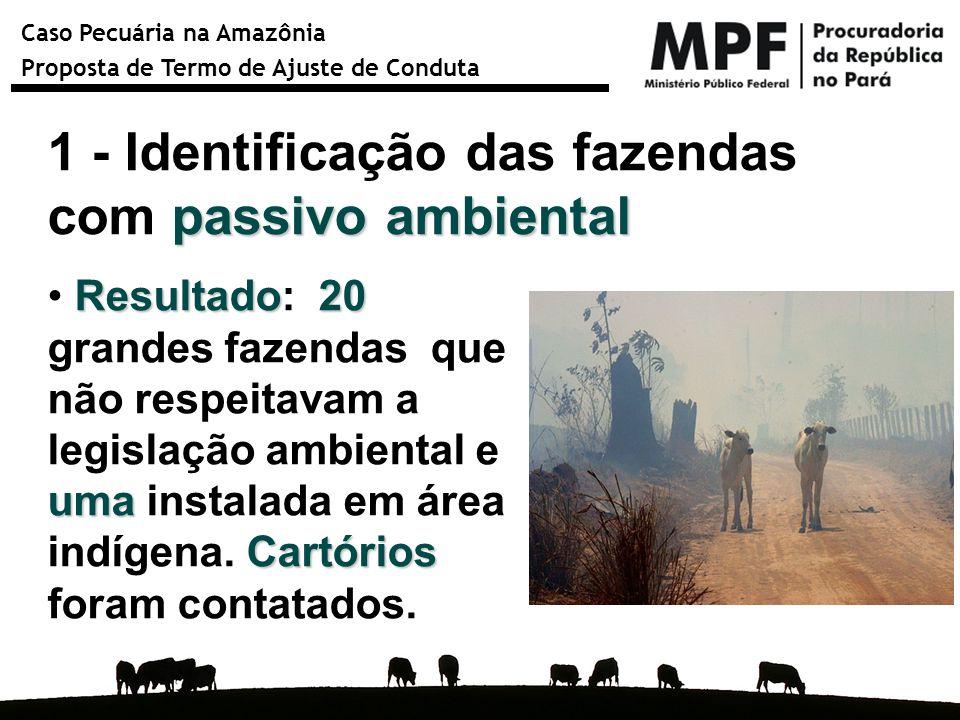 Caso Pecuária na Amazônia Proposta de Termo de Ajuste de Conduta passivo ambiental 1 - Identificação das fazendas com passivo ambiental Resultado20 um