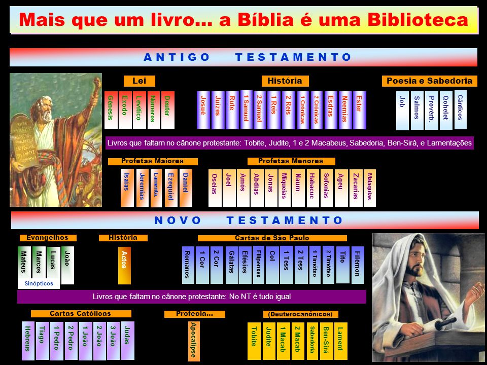 Mais que um livro… a Bíblia é uma Biblioteca A N T I G O T E S T A M E N T O Livros que faltam no cânone protestante: Tobite, Judite, 1 e 2 Macabeus,
