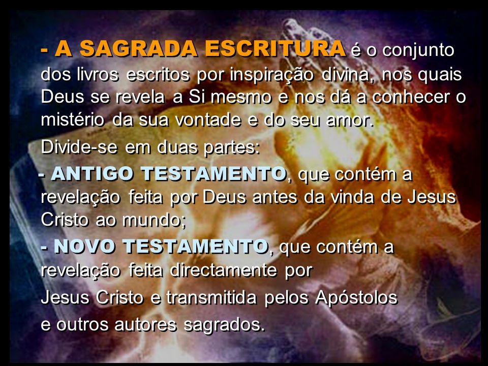 - A SAGRADA ESCRITURA é o conjunto dos livros escritos por inspiração divina, nos quais Deus se revela a Si mesmo e nos dá a conhecer o mistério da su