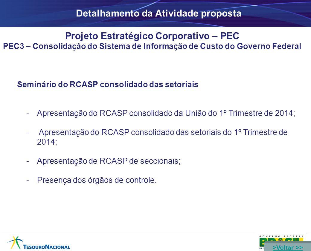 Detalhamento da Atividade proposta Projeto Estratégico Corporativo – PEC PEC3 – Consolidação do Sistema de Informação de Custo do Governo Federal Seminário do RCASP consolidado das setoriais -Apresentação do RCASP consolidado da União do 1º Trimestre de 2014; - Apresentação do RCASP consolidado das setoriais do 1º Trimestre de 2014; -Apresentação de RCASP de seccionais; -Presença dos órgãos de controle.