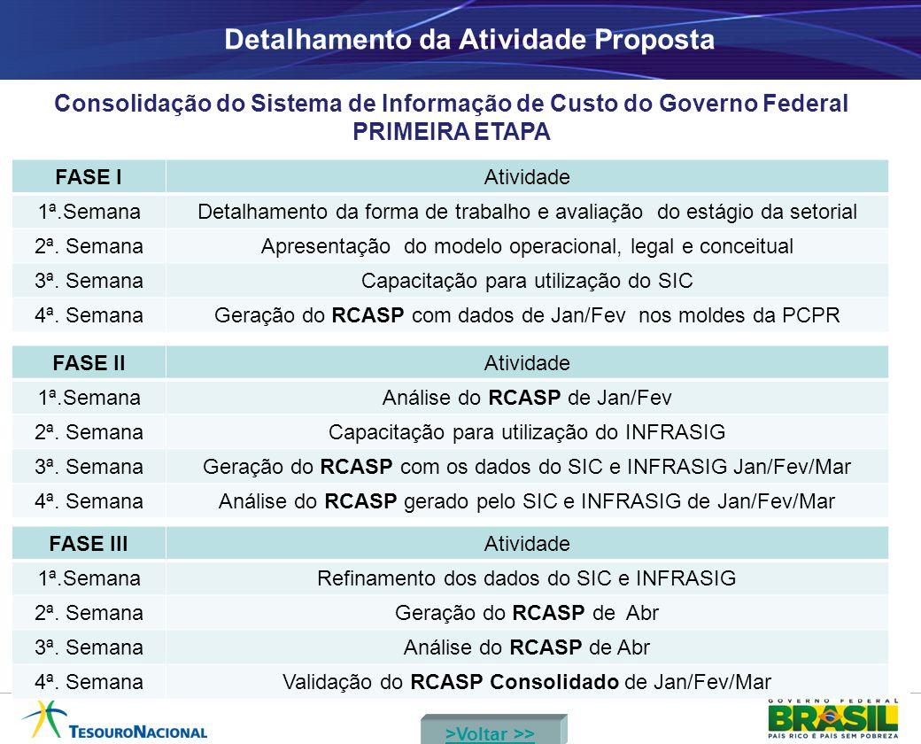 Detalhamento da Atividade Proposta Consolidação do Sistema de Informação de Custo do Governo Federal PRIMEIRA ETAPA FASE IAtividade 1ª.SemanaDetalhame
