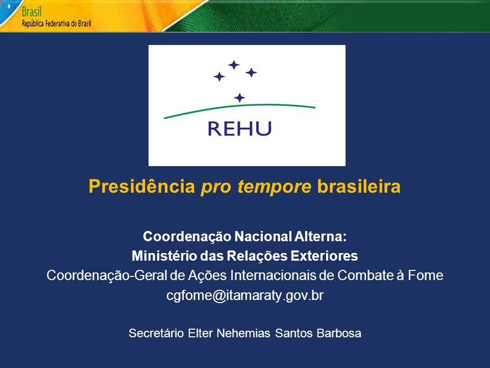 Presidência pro tempore brasileira Coordenação Nacional Alterna: Ministério das Relações Exteriores Coordenação-Geral de Ações Internacionais de Comba