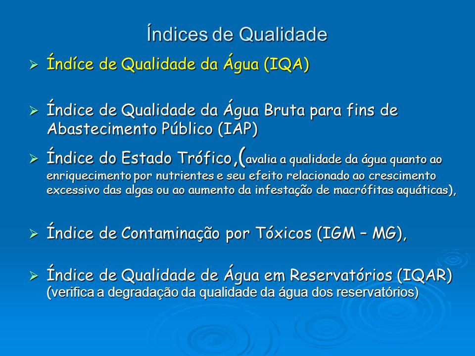  Índíce de Qualidade da Água (IQA)  Índice de Qualidade da Água Bruta para fins de Abastecimento Público (IAP)  Índice do Estado Trófico,( avalia a qualidade da água quanto ao enriquecimento por nutrientes e seu efeito relacionado ao crescimento excessivo das algas ou ao aumento da infestação de macrófitas aquáticas),  Índice de Contaminação por Tóxicos (IGM – MG),  Índice de Qualidade de Água em Reservatórios (IQAR) ( verifica a degradação da qualidade da água dos reservatórios) Índices de Qualidade