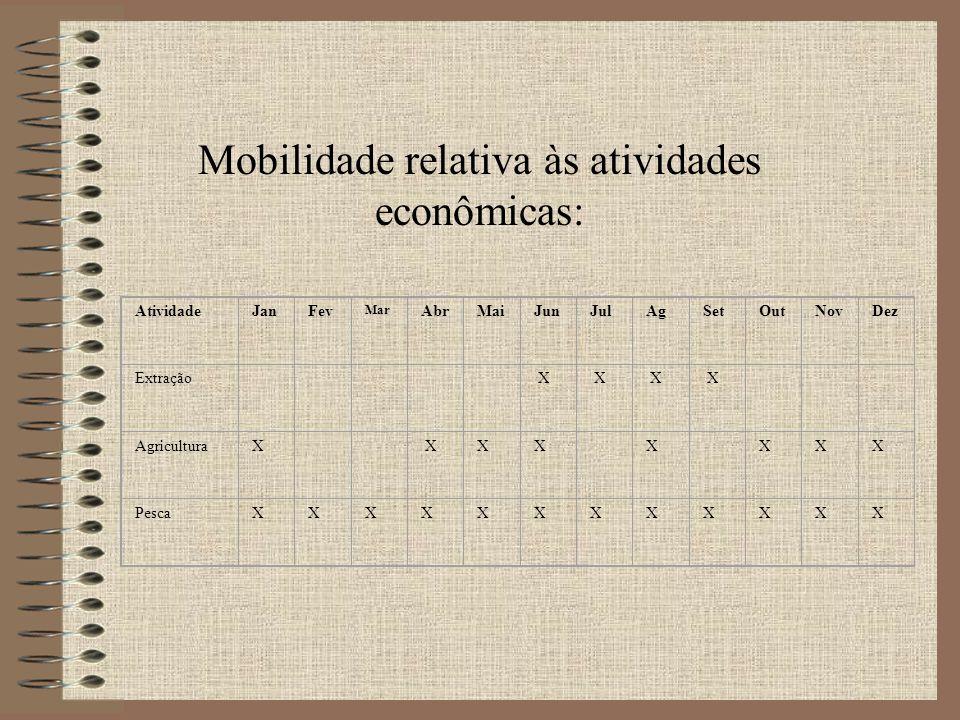 Mobilidade relativa às atividades econômicas: AtividadeJanFev Mar AbrMaiJunJulAgSetOutNovDez Extração X X X X AgriculturaX XXX X XXX PescaXXXXXXXXXXXX