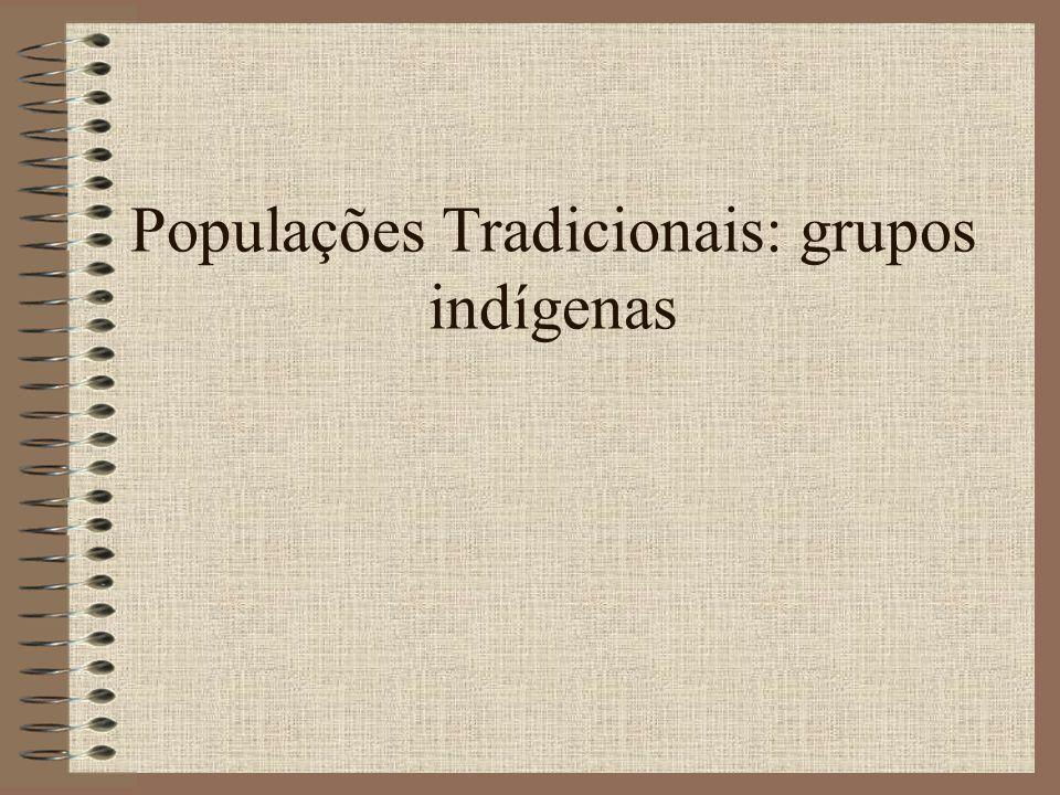 Populações Tradicionais: grupos indígenas