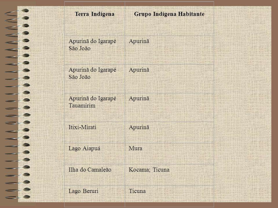 Terra Indígena Grupo Indígena Habitante Apurinã do Igarapé São João Apurinã Apurinã do Igarapé São João Apurinã Apurinã do Igarapé Tauamirim Apurinã I