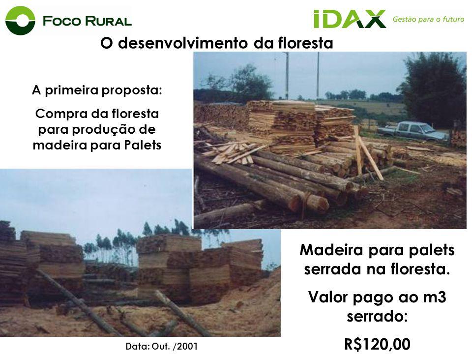 A primeira proposta: Compra da floresta para produção de madeira para Palets Madeira para palets serrada na floresta. Valor pago ao m3 serrado: R$120,