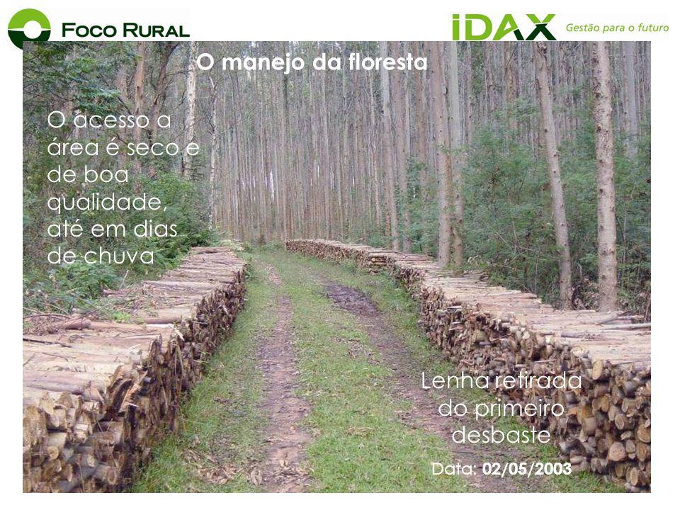 O acesso a área é seco e de boa qualidade, até em dias de chuva Lenha retirada do primeiro desbaste Data: 02/05/2003 O manejo da floresta