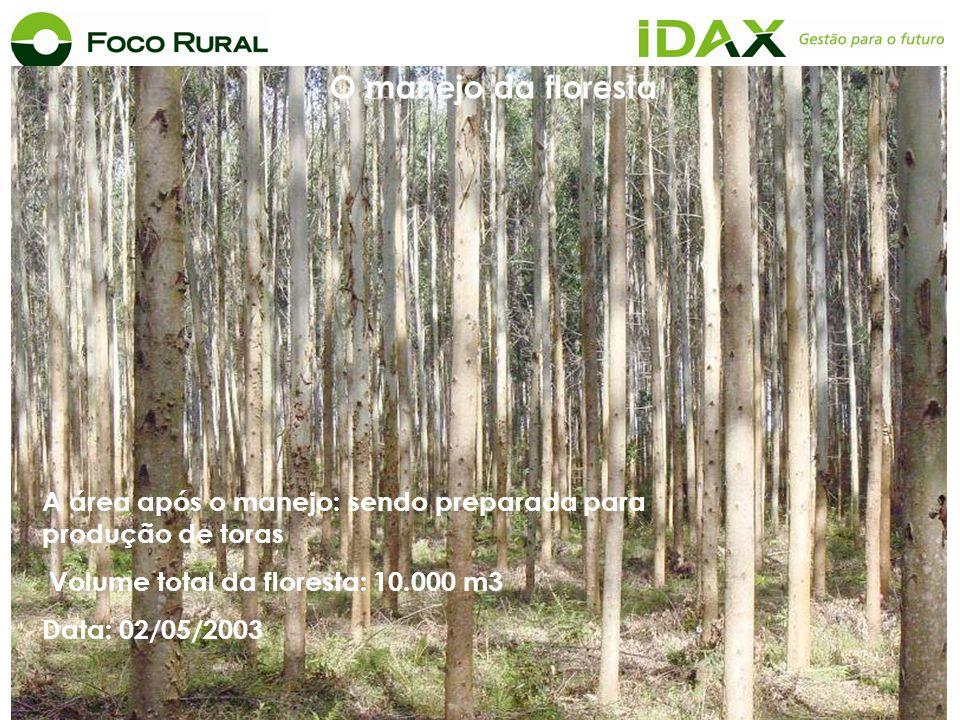 A área após o manejo: sendo preparada para produção de toras Volume total da floresta: 10.000 m3 Data: 02/05/2003 O manejo da floresta